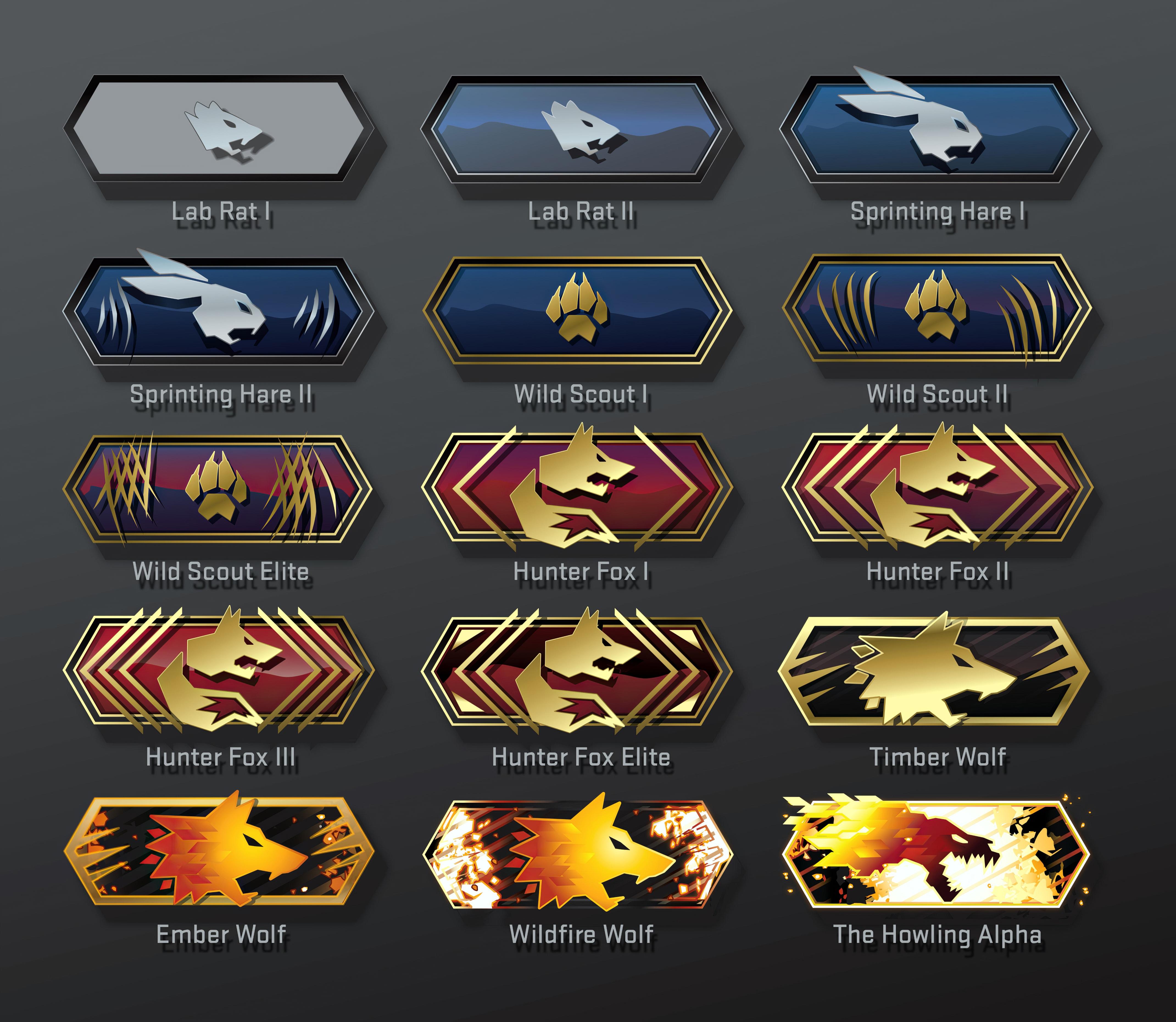 CS:GO skill groups in Danger Zone