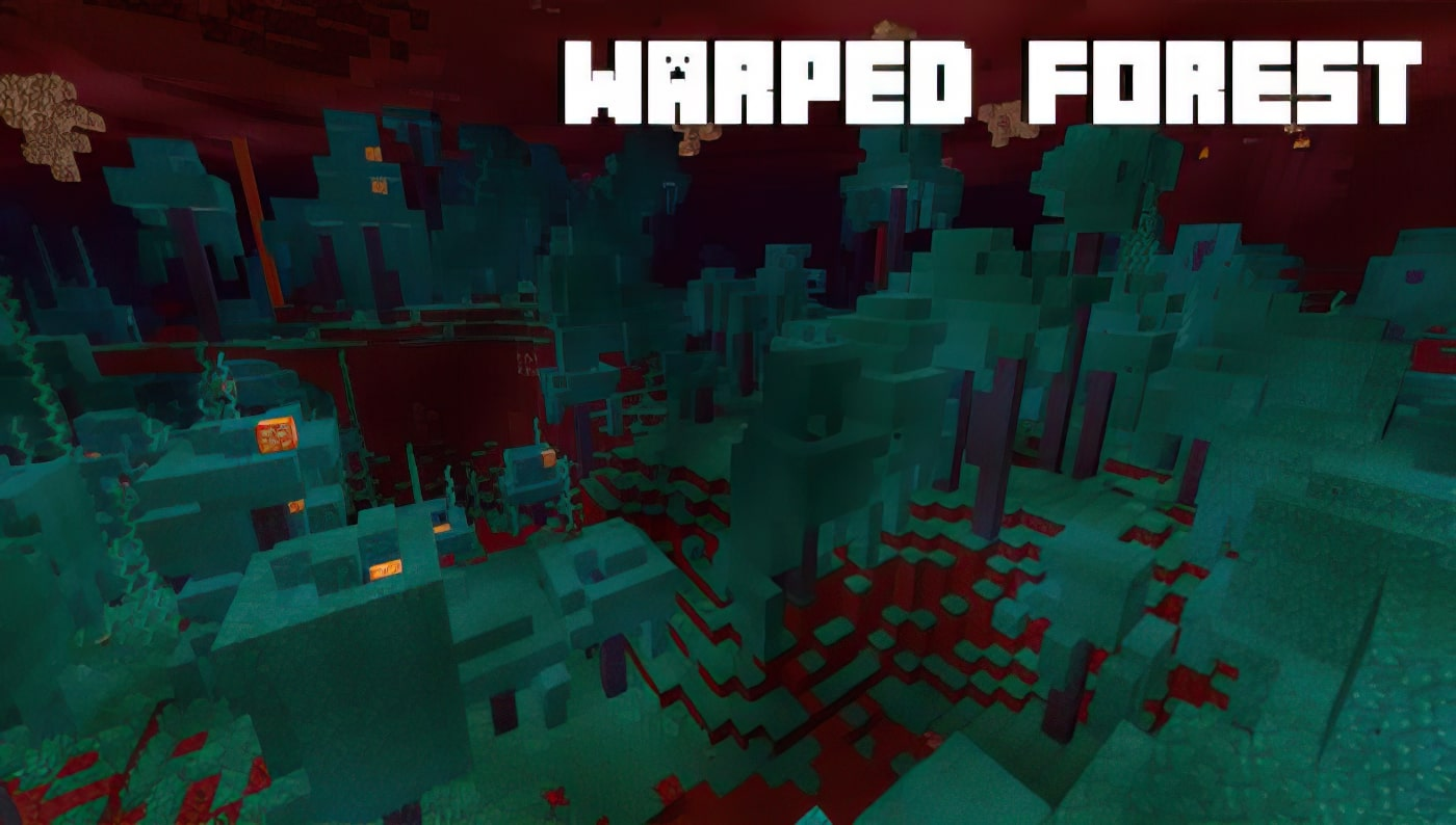 Warped Forest