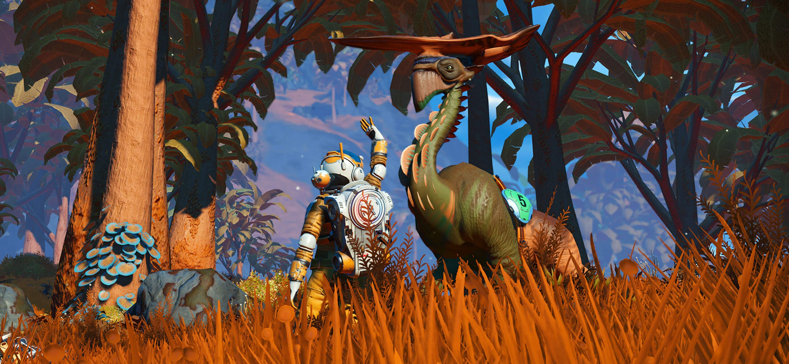 NMS Companions - Release