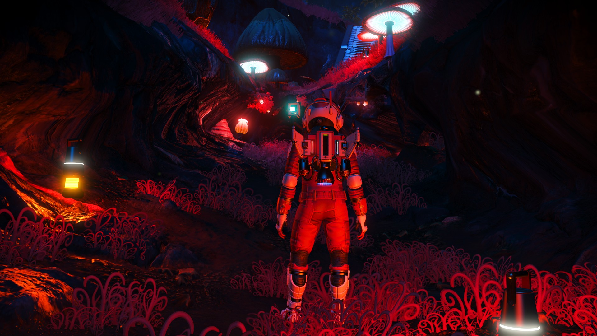 NMS Expedititions - 4